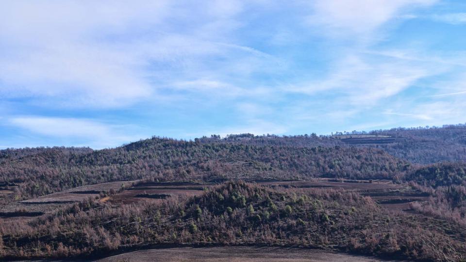 28.12.2017 paisatge  Vallmanya -  Ramon Sunyer