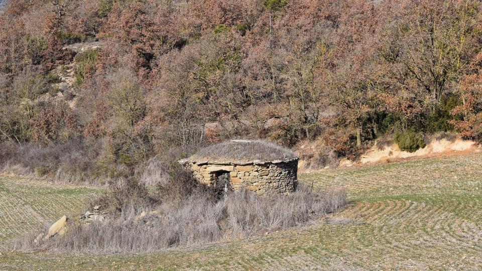 28.12.2012 cabana  Prades de la Molsosa -  Ramon Sunyer