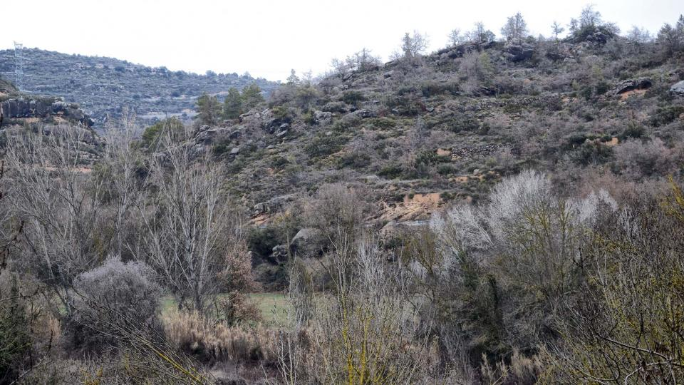 04.02.2018 paisatge  Torà -  Ramon Sunyer