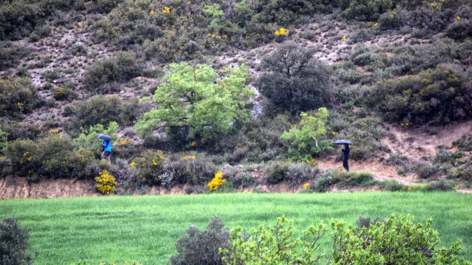 29.04.2018 Plovent  Castellfollit de Riubregós -  Ramon Sunyer