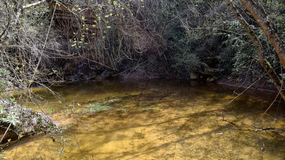22.04.2018 Toll a la rasa del castell  Llanera -  Ramon Sunyer