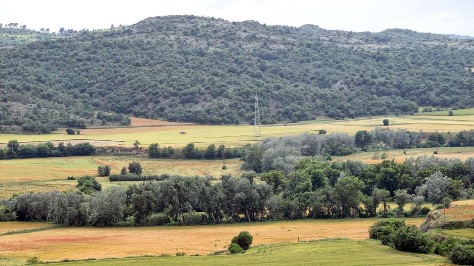10.06.2018 El curs del Llobregós a les Pompúries  Torà -  Ramon Sunyer