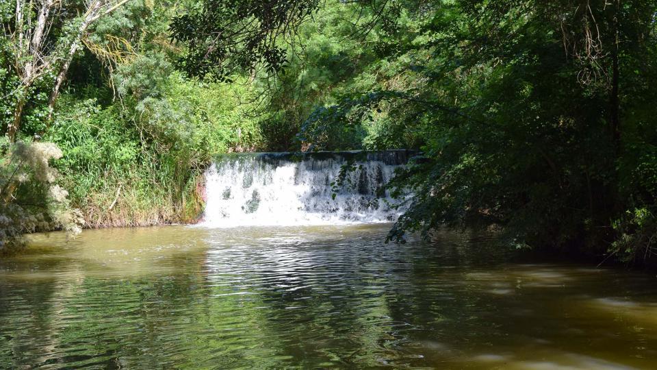 Espace fluvial  Peixera del molí del Cava - Auteur Ramon Sunyer (2018)