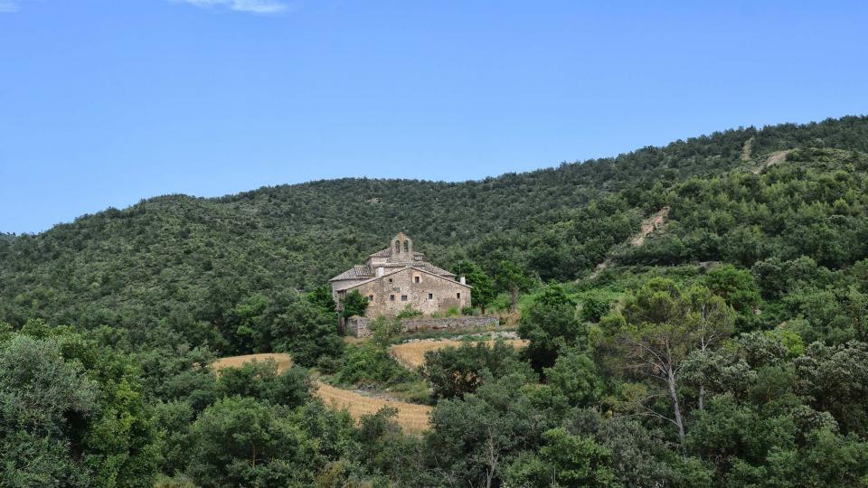 18.07.2018 Vista de la zona del monestir 20 anys després dels focs  Cellers -  Ramon Sunyer