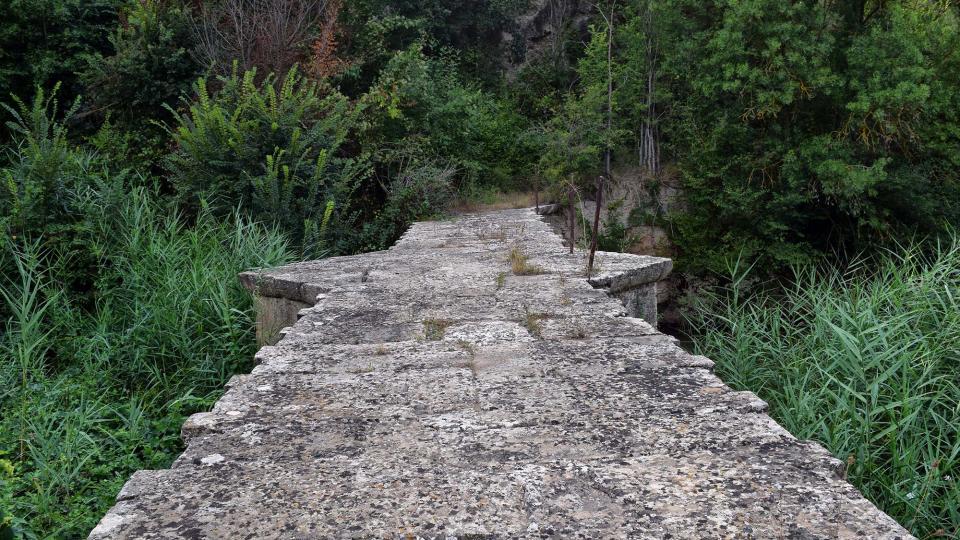 09.08.2018 Pont del Llobregós  Ribelles -  Ramon Sunyer