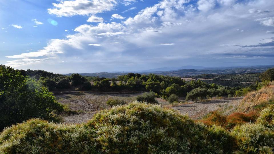07.10.2018 paisatge  Claret -  Ramon Sunyer