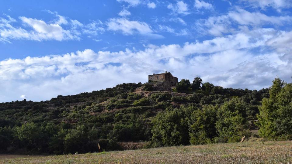 07.10.2018 Mas can Vila  Claret -  Ramon Sunyer