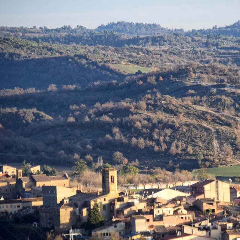 13.01.2019 paisatge  L'Aguda -  Ramon Sunyer