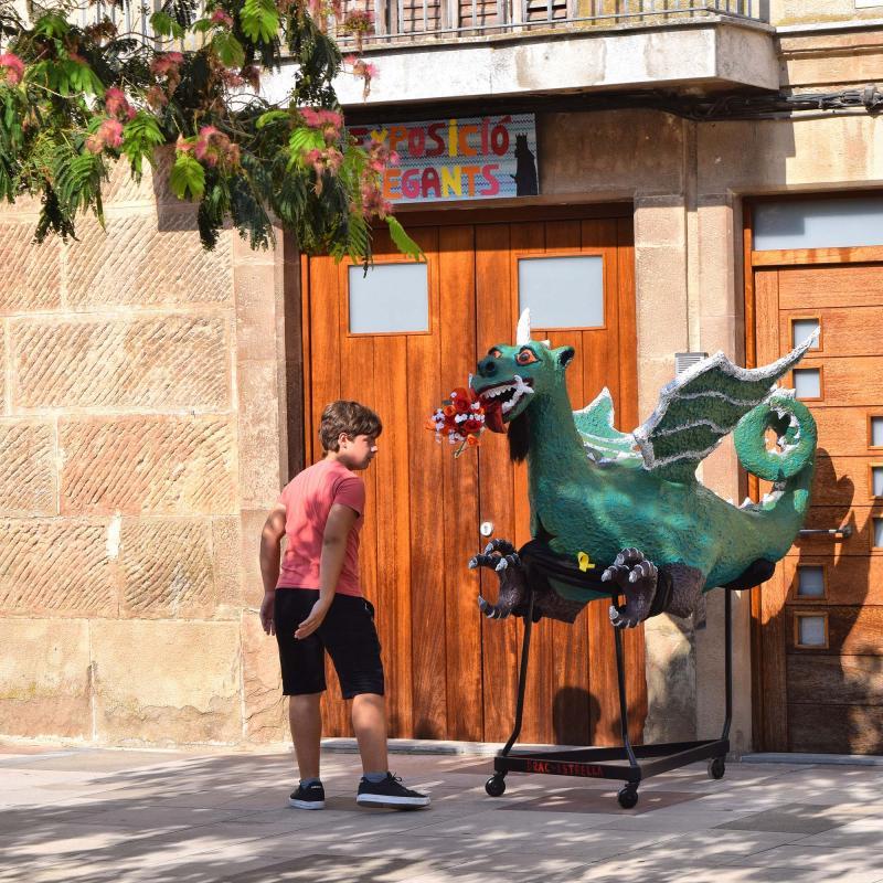 29.08.2019 4a. Exposició de Gegants  Torà -  Ramon Sunyer