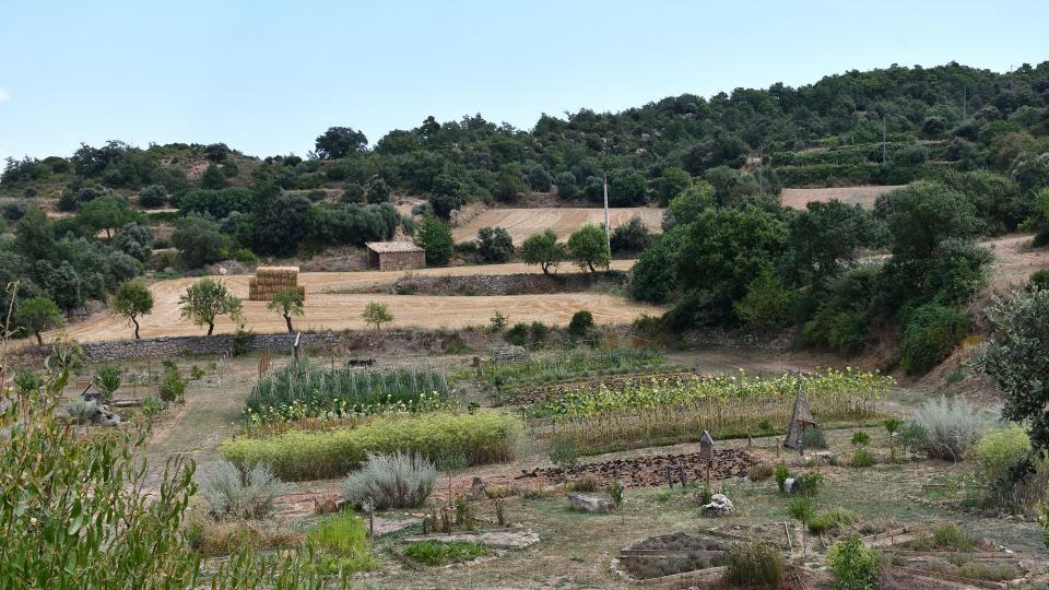 09.08.2020 Parc de les olors  Claret -  Ramon Sunyer