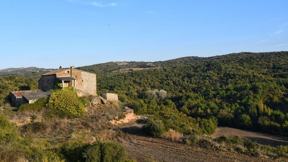 18.10.2020 Mas can Vila  Claret -  Ramon Sunyer