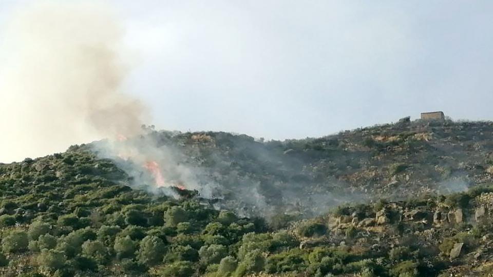 Incendi de vegetació a Torà
