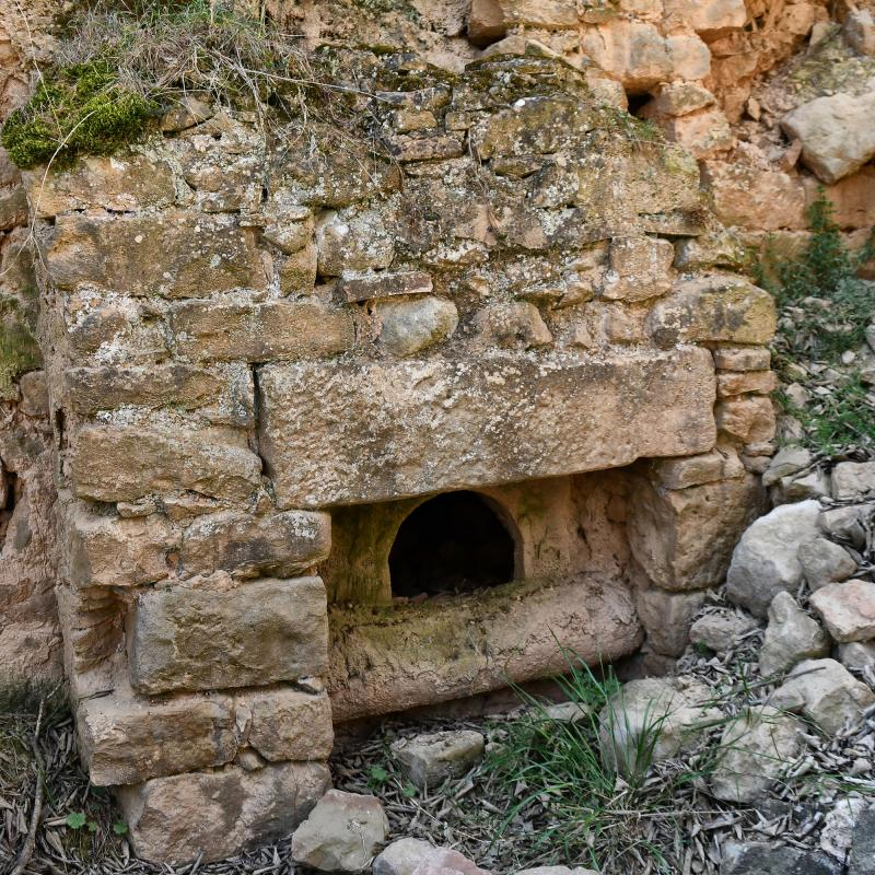 05.04.2021 Poble  Vallferosa -  Ramon Sunyer