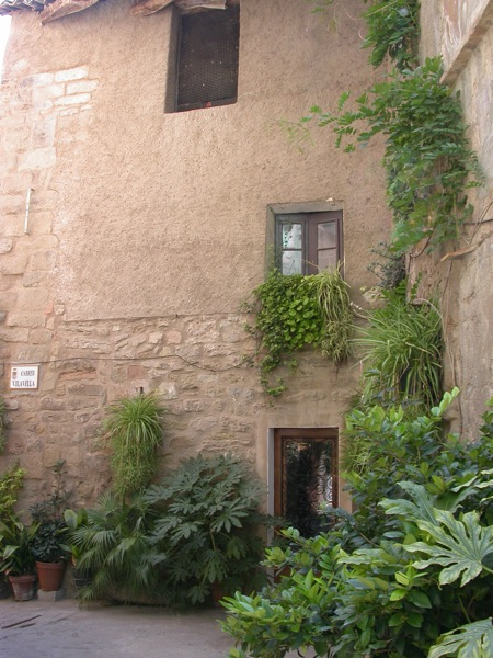 02.09.2005 Detall casa Jovans  Torà -  Ramon Sunyer