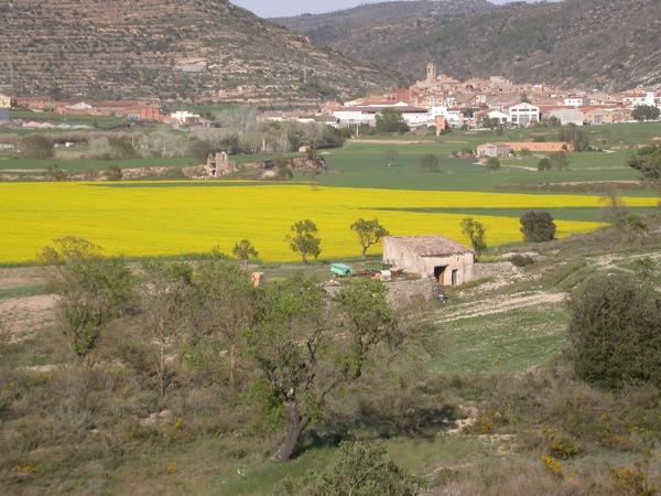 15.04.2006 Vista panoràmica del poble envoltat de sembrats  Torà -  Ramon Sunyer