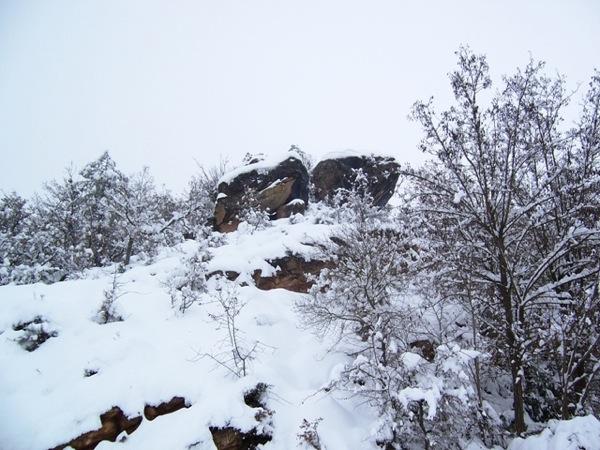 28.01.2006 Can Porta  Torà -  J.Gatnau Grau