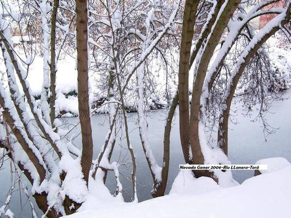 28.01.2006 Riu Llanera  Torà -  J.Gatnau Grau