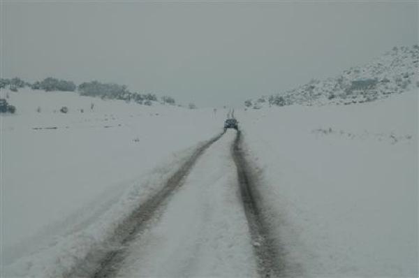 28.01.2006 Carretera Torà-Ponts  Torà -  Xavi