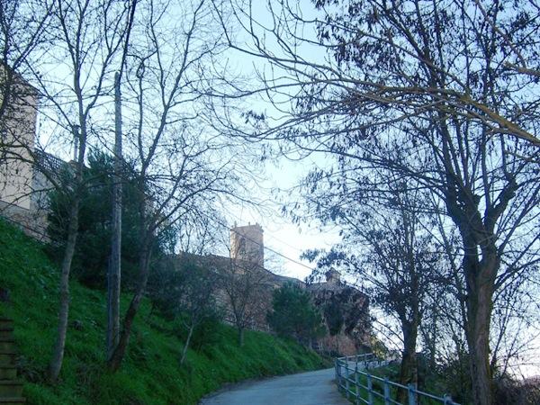 03.12.2005 Camí del cementiri  Torà -  Josep Gatnau