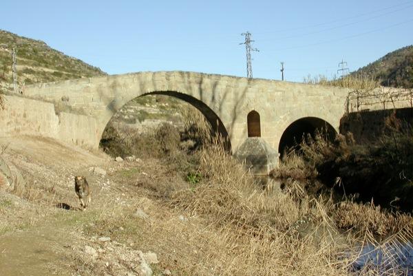 04.02.2005 Vista del Pont de les Merites  Torà -  Ramon Sunyer