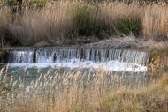 Fontanet: la peixera de fontanet  Ramon Sunyer
