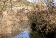 Torà: Pont de les merites de Torà  Ramon Sunyer i Balcells