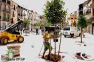 Torà: Plantant els darrers arbres  Ramon Santesmasses