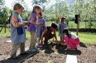 Nens de l'escola d'Alins planten espècies autòctones
