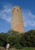 Vallferosa: La torre des del poble  Xavier Sunyer