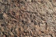 Vallferosa: Rebossat exterior.  Xavier Sunyer