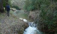 Llanera: Riu llanera. L'aigua tampoc es troba a faltar durant la primavera  Xavier Sunyer