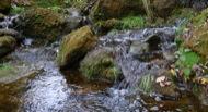 Llanera: Riu Llanera. Si quelcom te aquest riu és aigua.... molta aigua.  Xavier Sunyer