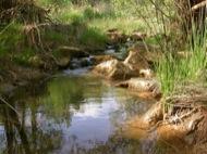Fontanet: El riu Llanera  Ramon Sunyer
