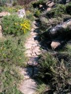 L'Aguda: El camí original tenia molts trams empedrats  isidre sunyer