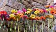 Fira de la Flor de Florejacs