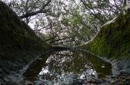 : La pluja vessa la tomba altmedieval de Clavells  Xavier