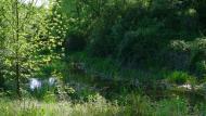 : 25 maig.riu Llanera. Toll de l'Amic  Xavier
