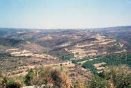 L'Aguda: Serralade de l'Aguda  Ramon Sunyer