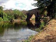 Torà: El pont de les Merites  Carmen Aparicio