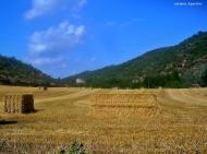Torà: paisatge de Torà  Carmen Aparicio