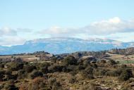 Biosca: La vall amb el Montsec al fons  Ramon Sunyer