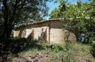 Llanera: Sant Salvador del Coll  Isidre Blanc