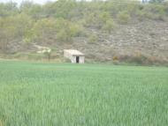 :   Sònia Castelló