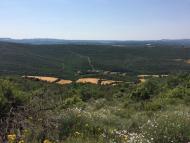 Claret: vista de la vall de Cellers  Grans Reptes