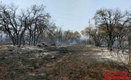 Incendi forestal a Biosca
