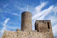 Boixadors: Castell i la torre  Ramon Sunyer