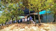 Vallferosa: Festa major  Ramon Sunyer
