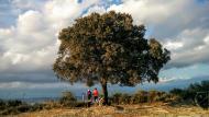 Vicfred: Esguardant la Vall  Ramon Sunyer
