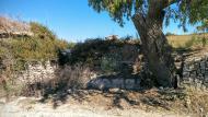 Massoteres: pedrís al costa de cabana  Ramon Sunyer