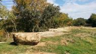 Llanera: Paisatge de tardor  Ramon Sunyer